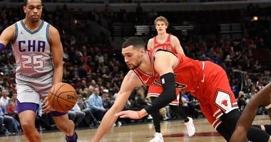 Bulls guard Zach LaVine (8) goes for a loose ball with Hornets forward P.J. Washington (25).