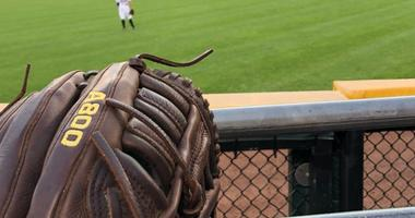 A view from Matt Spiegel's seats at Guaranteed Rate Field in his family's quest to catch a home run ball