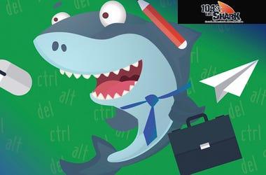 office shark