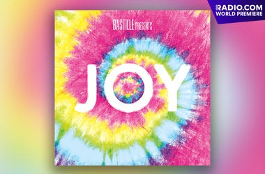"""Bastille """"Joy' Cover Art"""