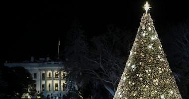 The National Christmas Tree is illuminated during the annual lighting ceremony held by the National Park Service at the Ellipse near the White House, on December 5, 2019 in Washington, DC.