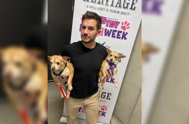 PSPCA Pets of the Week with Bennett: DeDe & Rhapsody
