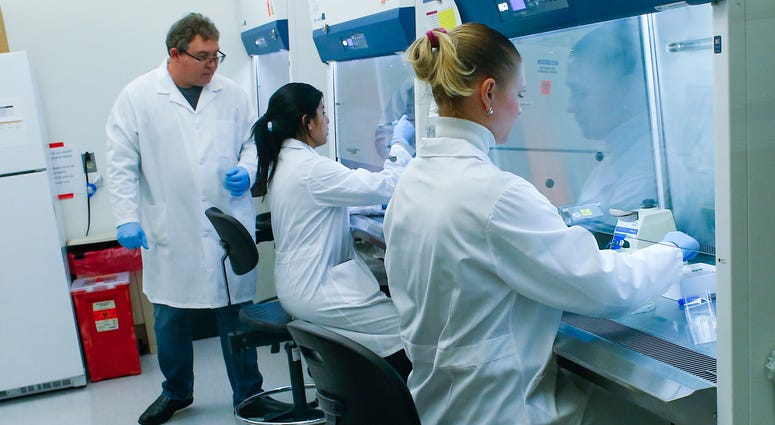 File image of researchers developing test for COVID-19 virus.