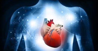 heart-disease-GettyImages-1035980904.jpg