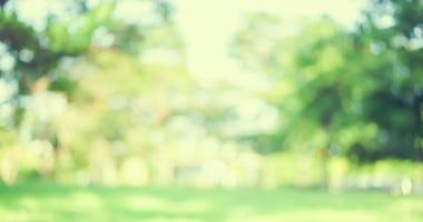 springtime-GettyImages-1041155610.jpg