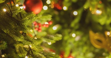 christmas-tree-GettyImages-1049707822.jpg