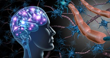 Healthy Rounds: Multiple Sclerosis
