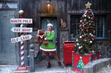 Santa the experience