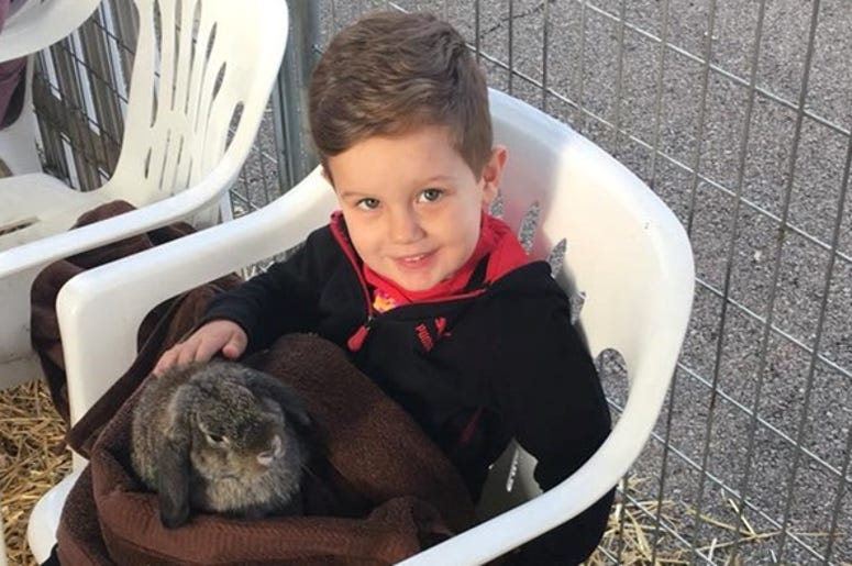 Tristan and A Bunny