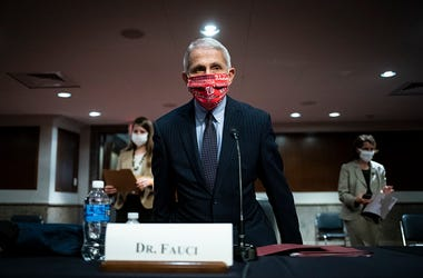 Dr. Fauci, White House Advisor, Trading Cards, Chicago Graphic Designer, Collection