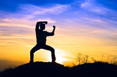 Karate Kid 2018