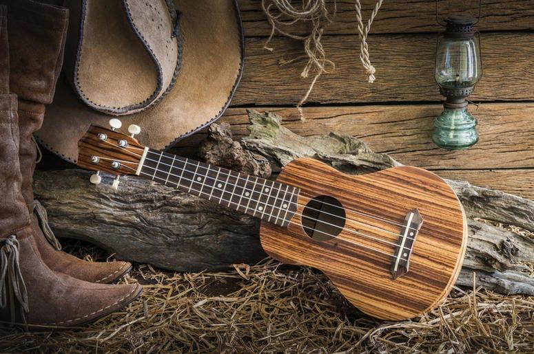 Cowboy Hat and Guitar