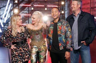 The Voice, Coaches, TV Competition Show