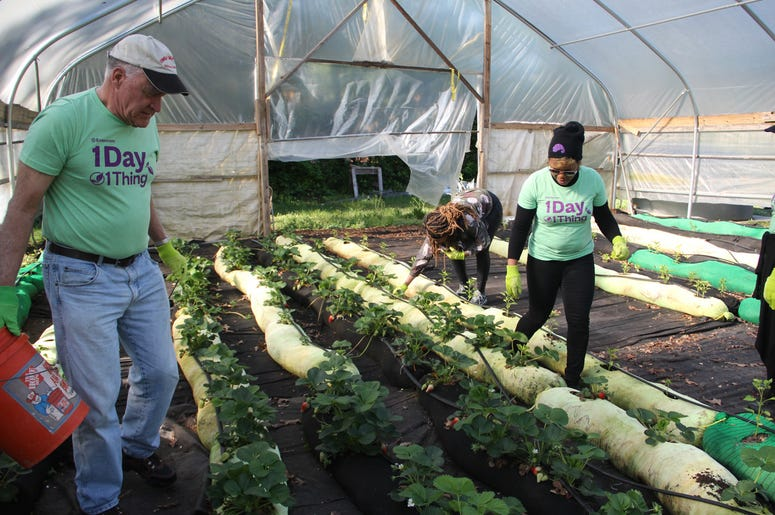 V-103 and Entercom Atlanta employees volunteer at Urban Farms in College Park, GA, on Earth Day 2019