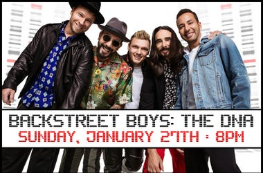 Backstreet Boys: The DNA