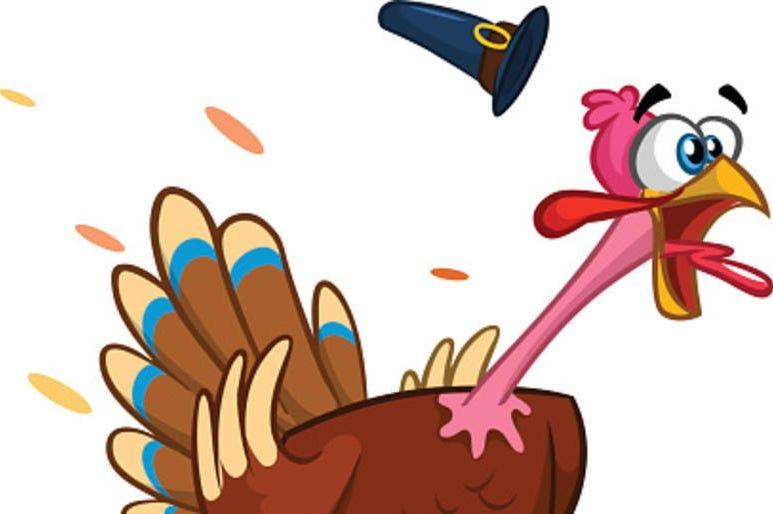 Scared Turkey