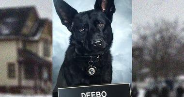 K-9 Officer Deebo
