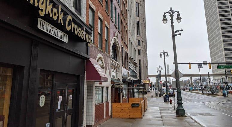 Businesses Along Woodward Avenue Detroit