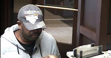 Grosse Pointe Woods Bank Robber