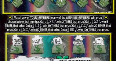 Newaygo County lottery winner