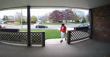 roseville porch pirate