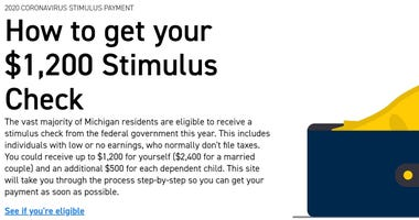 stimulus check website screenshot