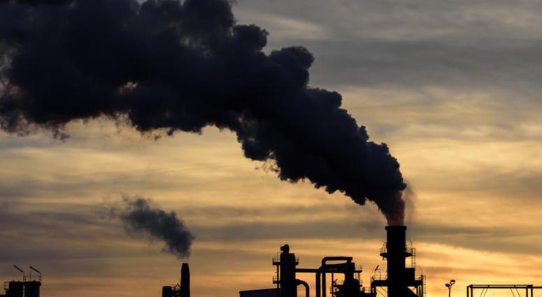 plant pollution