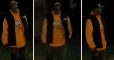 detroit hit and run suspect