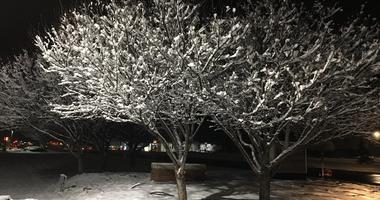 oakland county snow