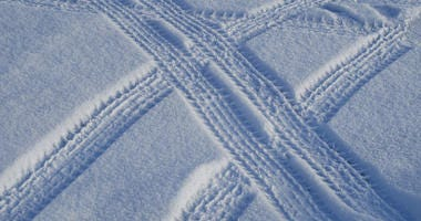 tracks in snow