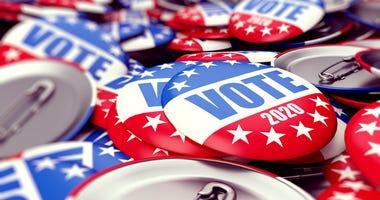 Voting pins