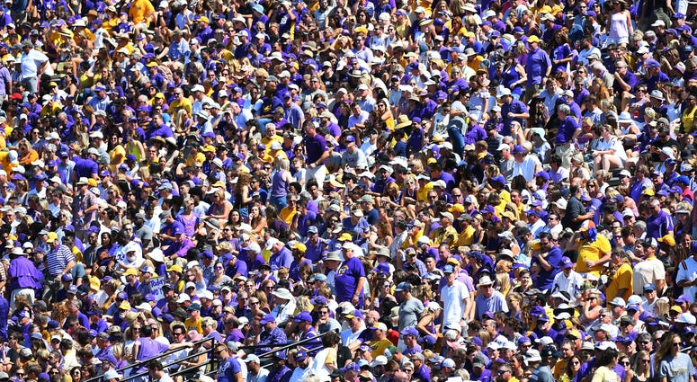 LSU Tigers fans look on from the stands during the first half against the Vanderbilt Commodores at Vanderbilt Stadium.