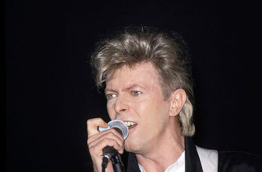 David Bowie performs live in concert.