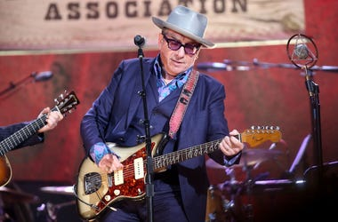 Elvis Costello performs live in concert.