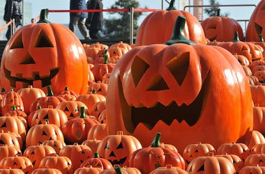 Pumpkins are seen in a market for Halloween season.