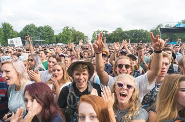 Pitchfork Music Festival Chicago Crowd