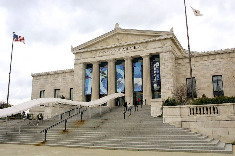 The entrance to the Shedd Aquarium museum in Chicago.