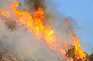 Australian Fire
