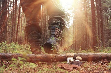 Boots walking in forest