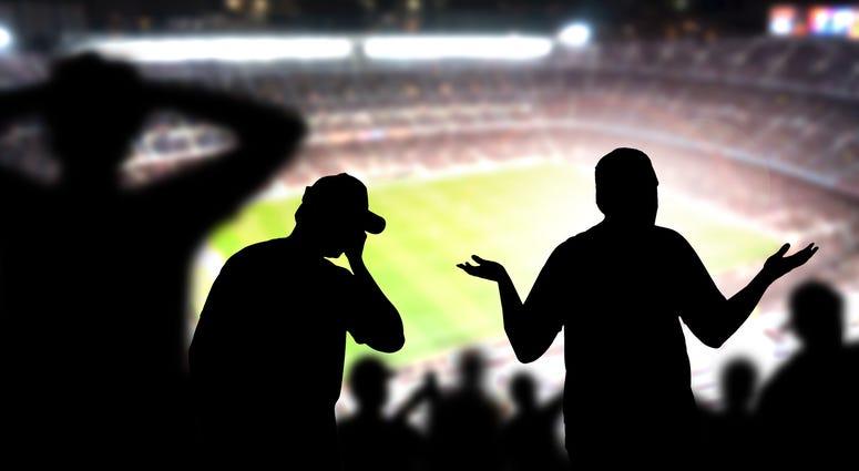 sports, fans, crazy