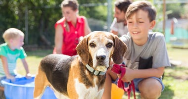 Pet Paradise offering PAW Packs for new pet adoptions; Mar.15th through May 31st