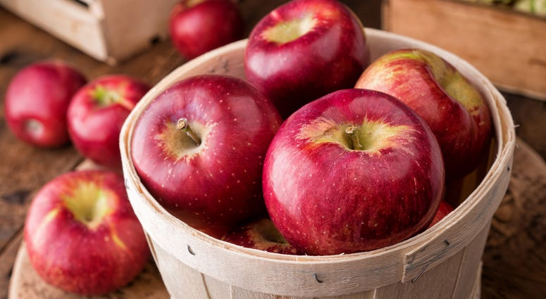 Cosmic Crisp Apple to hit produce departments