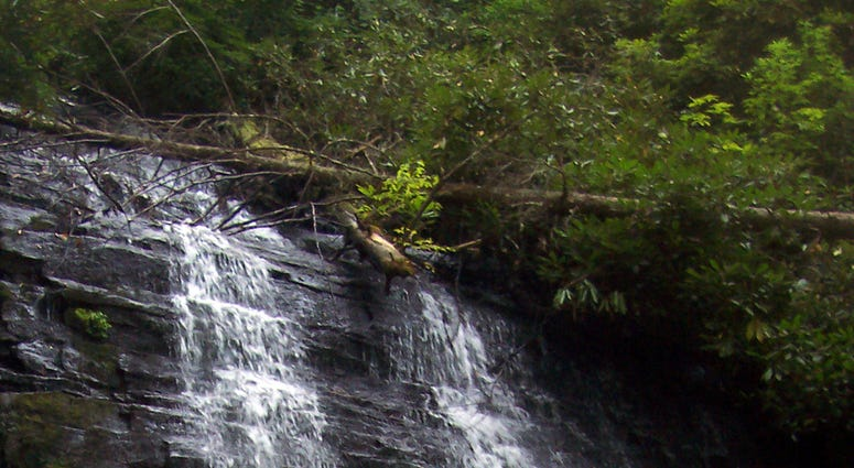 The South Carolina falls are known as Spin Auger Falls, Spoonauger Falls and Rock Cliff Falls. But the 50-foot-high cascade is on a small creek that empties into the Chattooga River in the Ellicott Rock Wilderness. (Photo by Bob Downing/Akron Beacon Journ