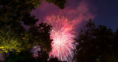 Pink Fireworks Light Up the Night Sky Between Silhouettes of Tree Branches