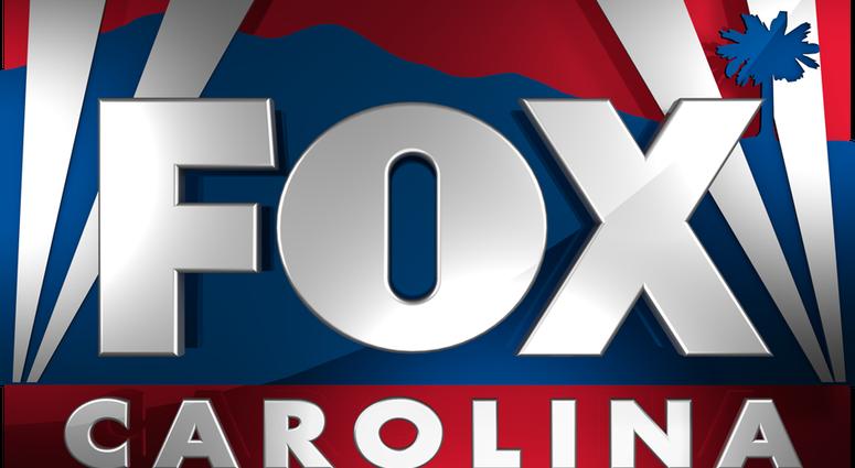 Fox Carolina, WHNS-TV logo