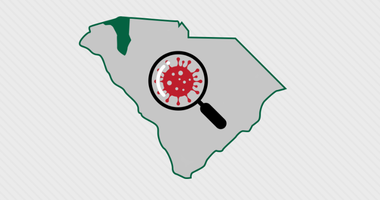 Greenville County  COVID-19 Statistics, Central data hub for citizens and local decision makers
