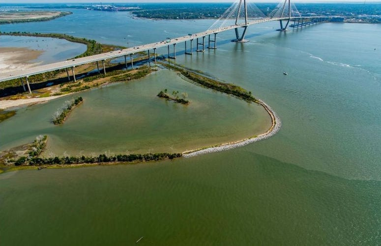 The Drum Island Marsh Restoration Project created 22 acres of salt marsh in the middle of Charleston Harbor.