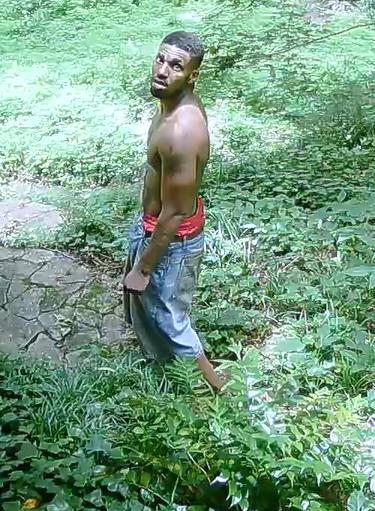 Burglary Suspect - GPD