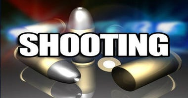 Shooting at Caulder Ave and George Washington Carver Drive, Spartanburg