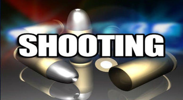 Shooting at Caulder Ave and George Washington Carver Drive, Spartanburg